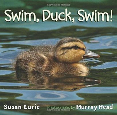 Swim Duck Swim Book